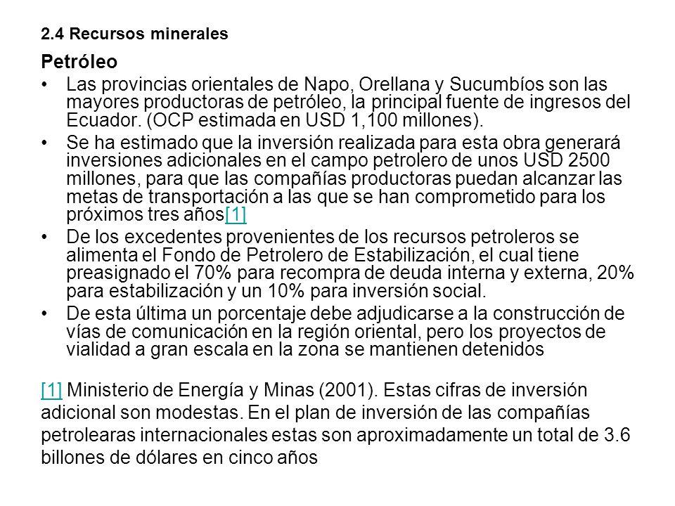 [1] Ministerio de Energía y Minas (2001). Estas cifras de inversión